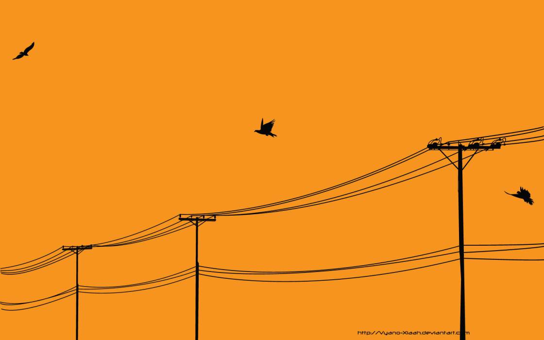 vector_threadless_power_lines_desktop_1920x1200_hd-wallpaper-988288